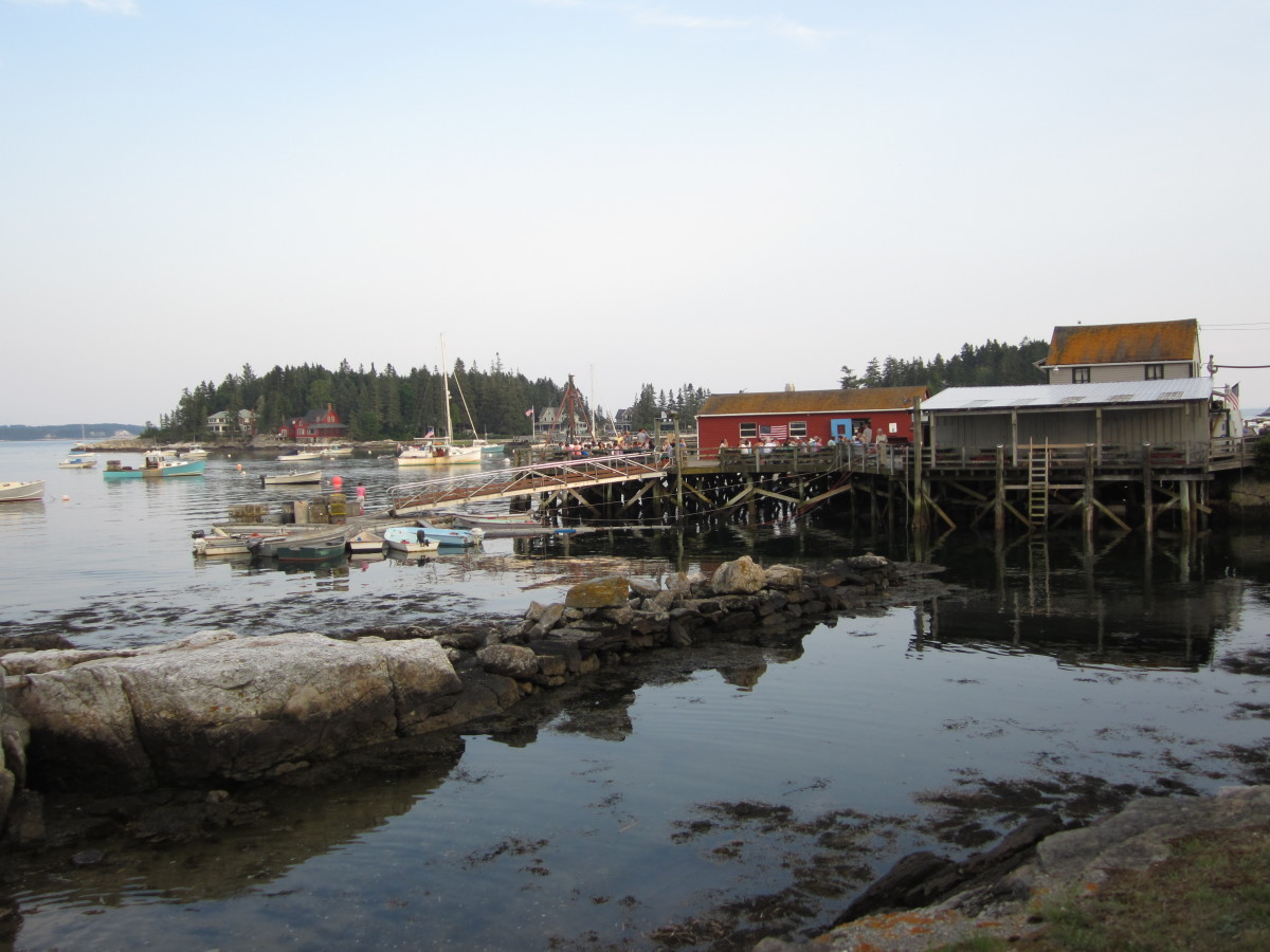 View of Five Islands Lobster Co from a distance on shore.