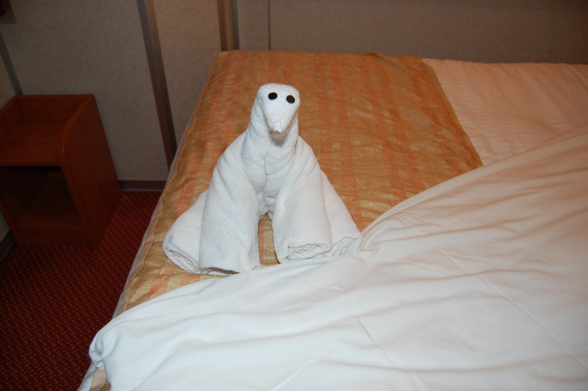 One of many towel animals that we got on the Carnival Imagination