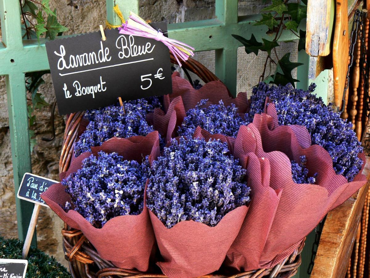 lavender is a herbal powerhouse for its many qualities, uses and benefits.