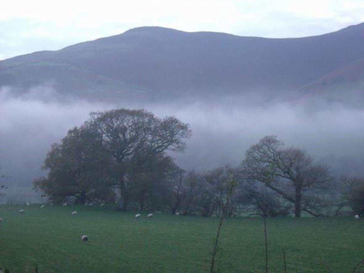 The Dyfi Valley
