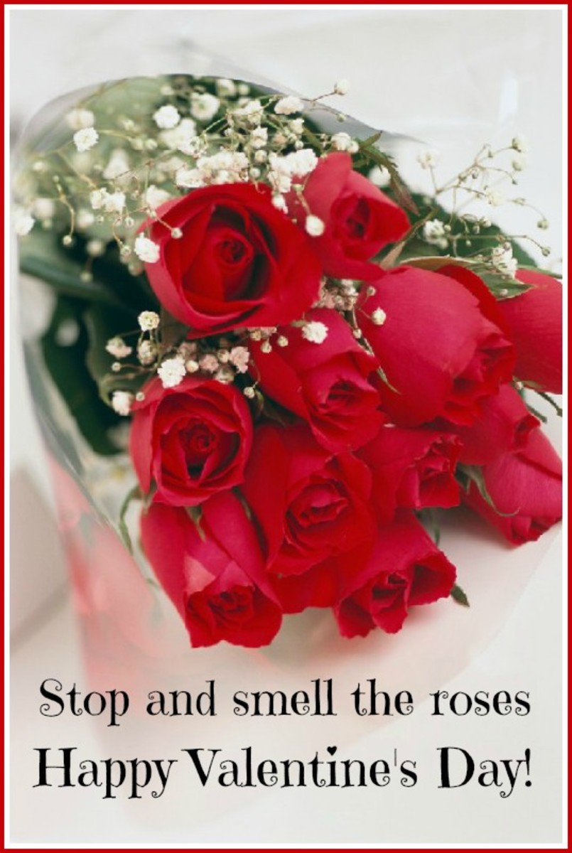 Roses Valentine's Day Card