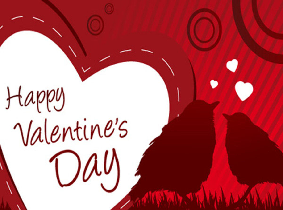 Happy Valentine's Day with Birds in Love
