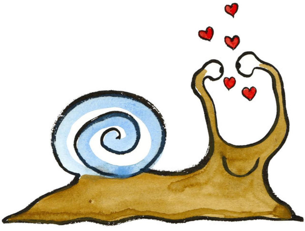 Snail Love Valentine