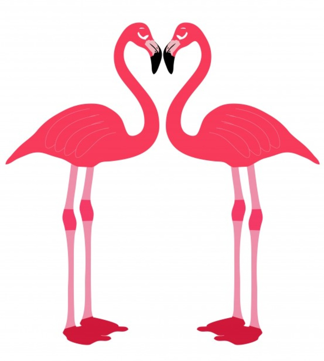 Two Flamingos Making a Heart Picture
