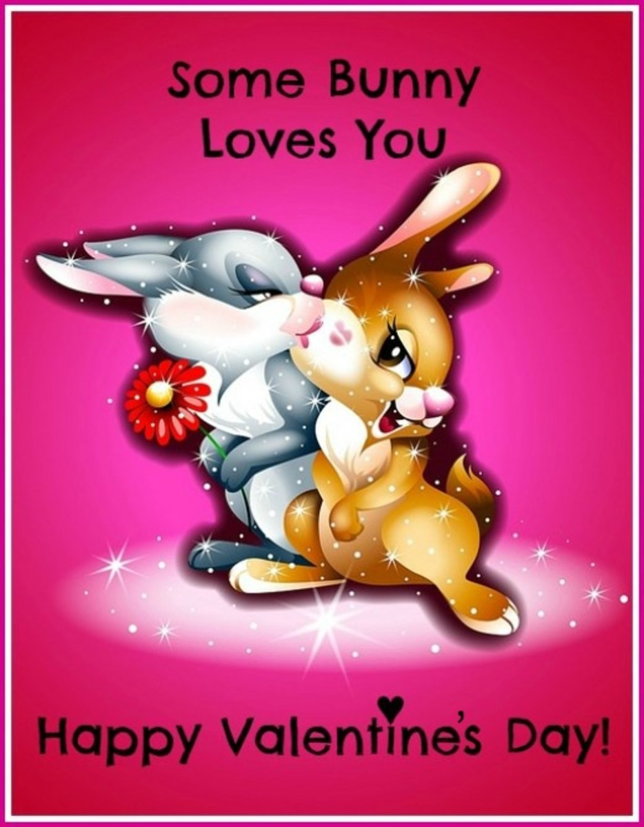 Funny Bunny Valentine's Day Card
