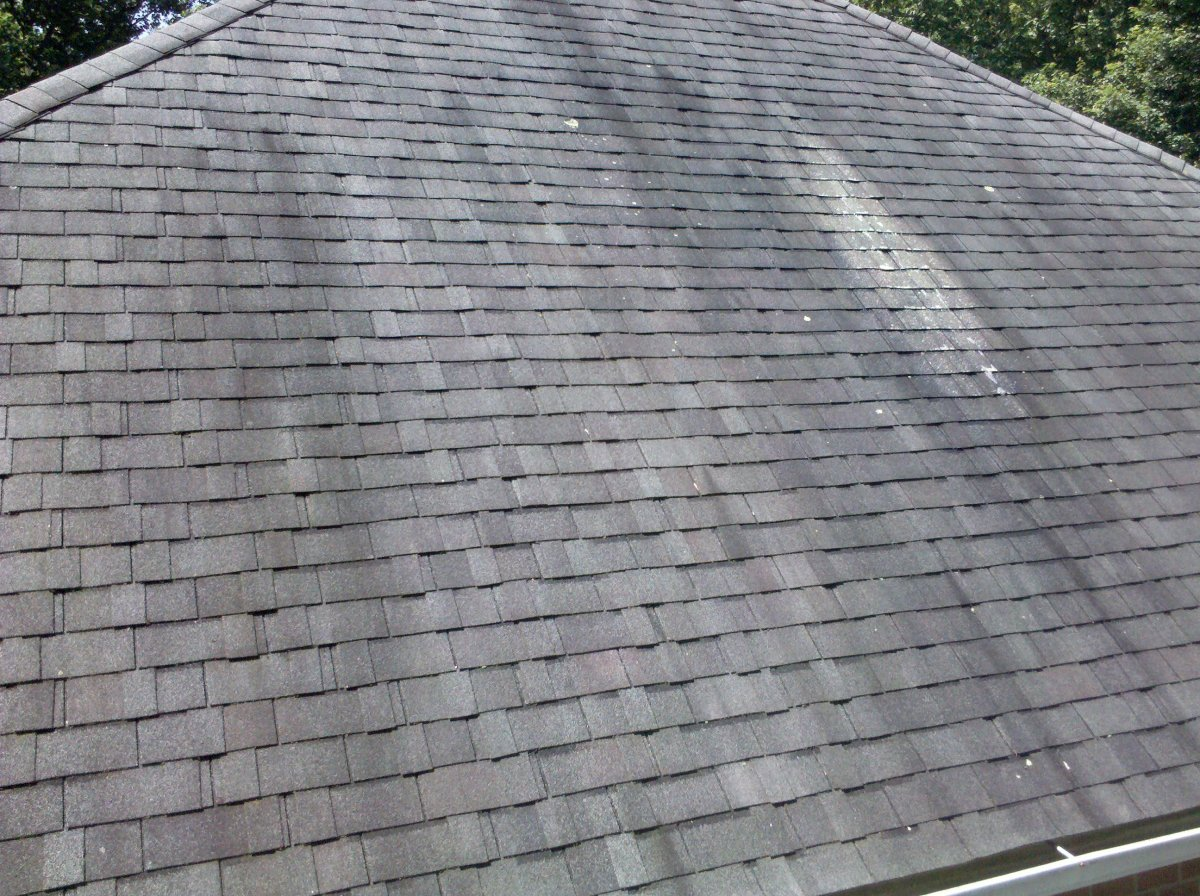Discolored buildup on asphalt roof shingles is frequently caused by algae, not mold or mildew.