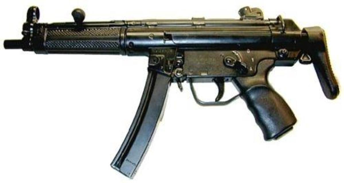 Dixon v Bell [1816] - Gun