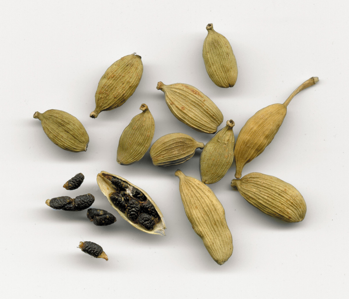 Harmful Effects and Drug Interactions of Aromatic Culinary Spices Cardamom, Cinnamom, Clove, and Nutmeg