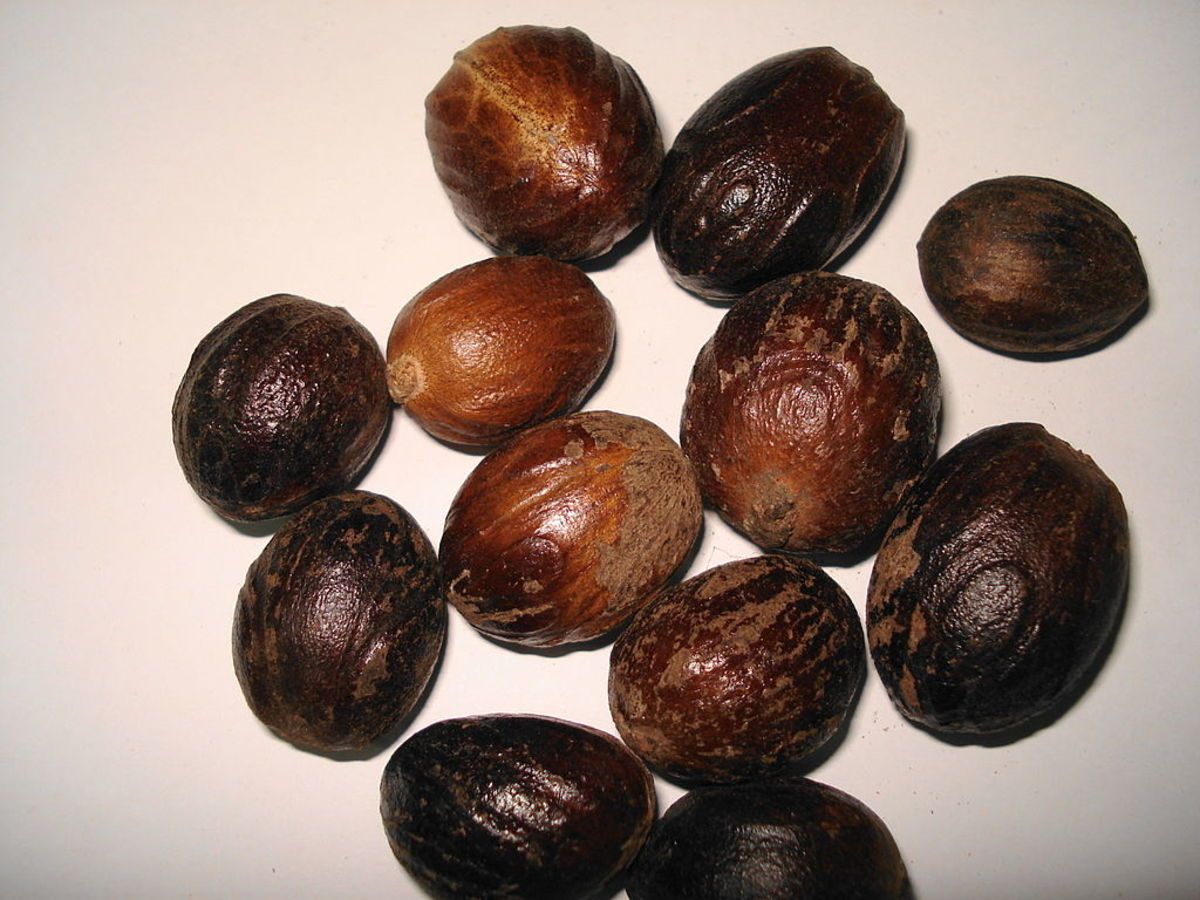 Whole Kernels of Nutmeg