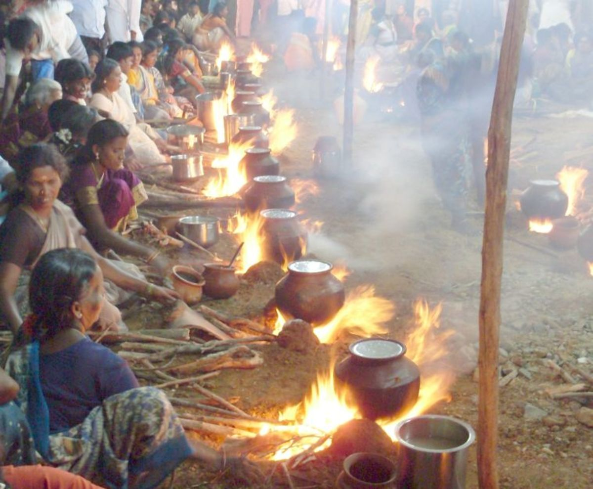 pongal being celebrated by the community