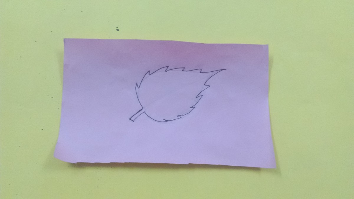 Draw a leaf on a regular paper.