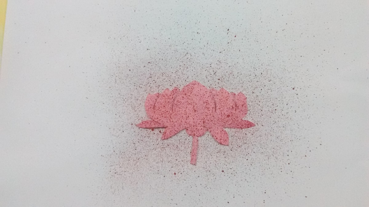 Place the flower on the white paper and spray the red paint with toothbrush.