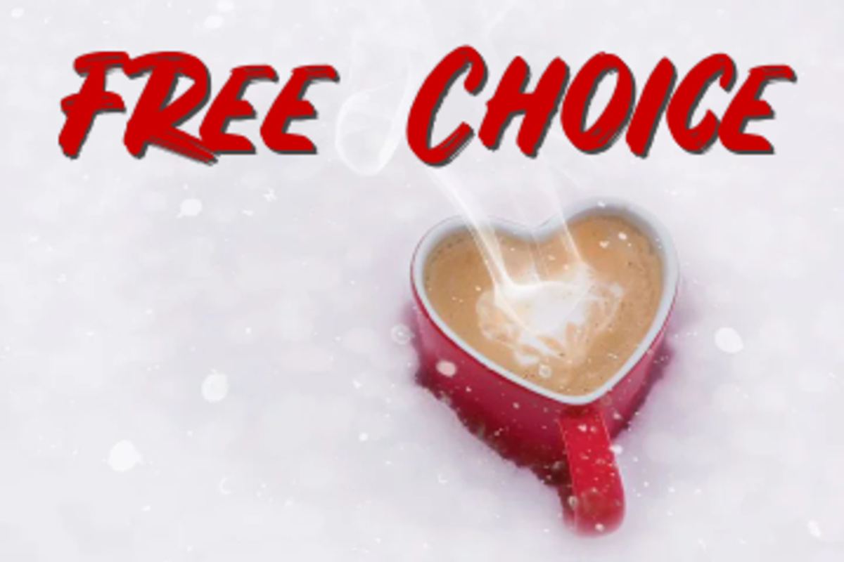 poem-free-choice