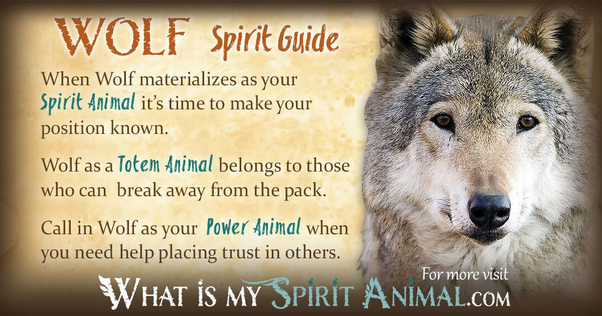 I've been told my spirit animal is a wolf.