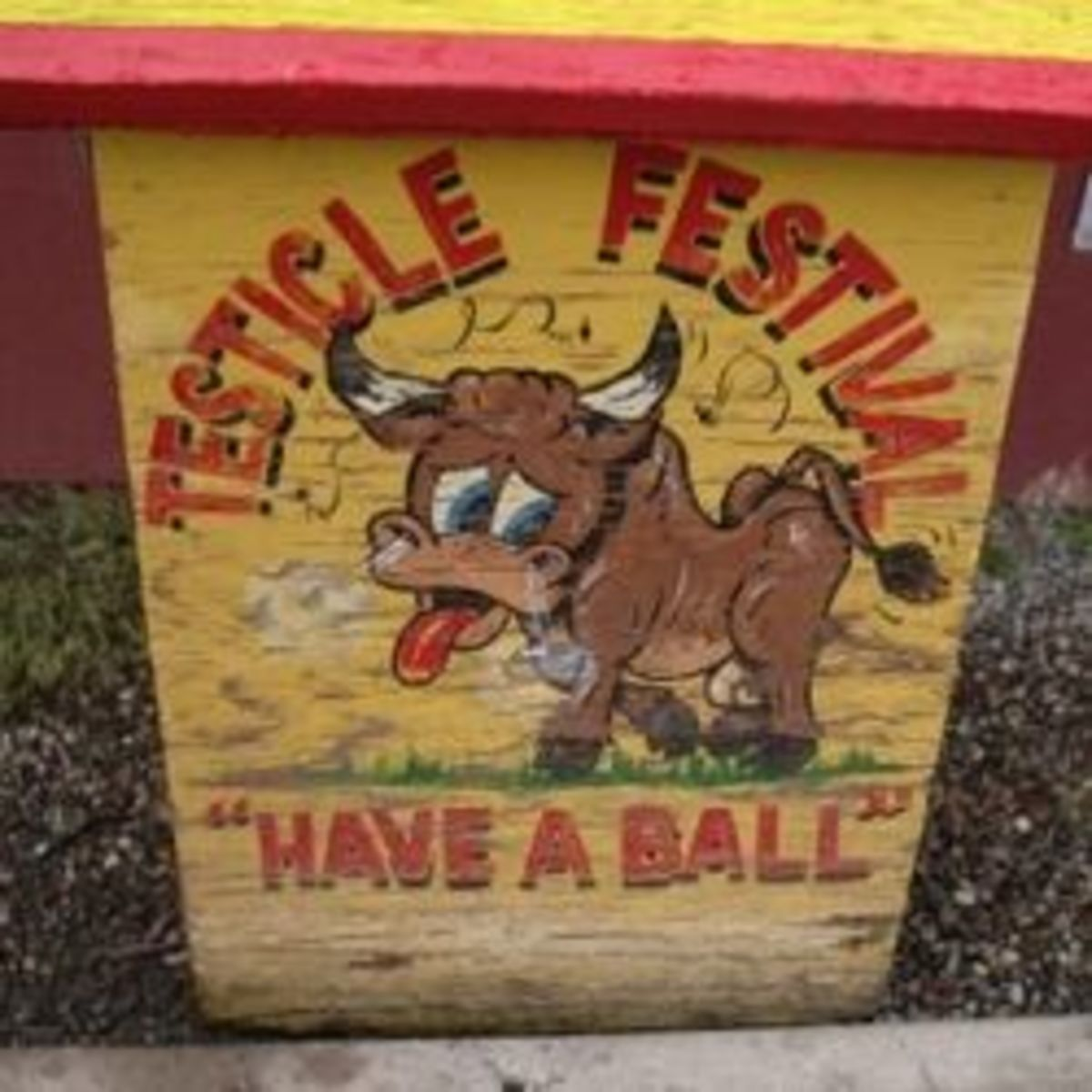 Testicle Festivals