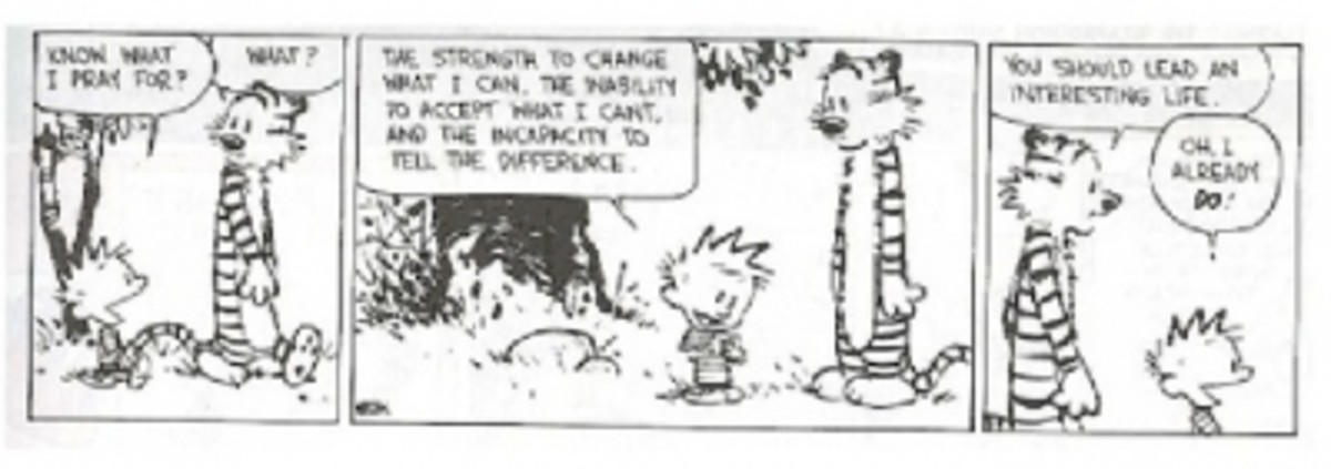 Calvin's take on The Serenity Prayer