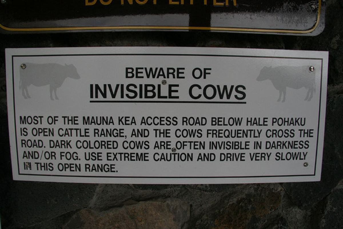 Mauna Kea Sign - Beware of Invisible Cows