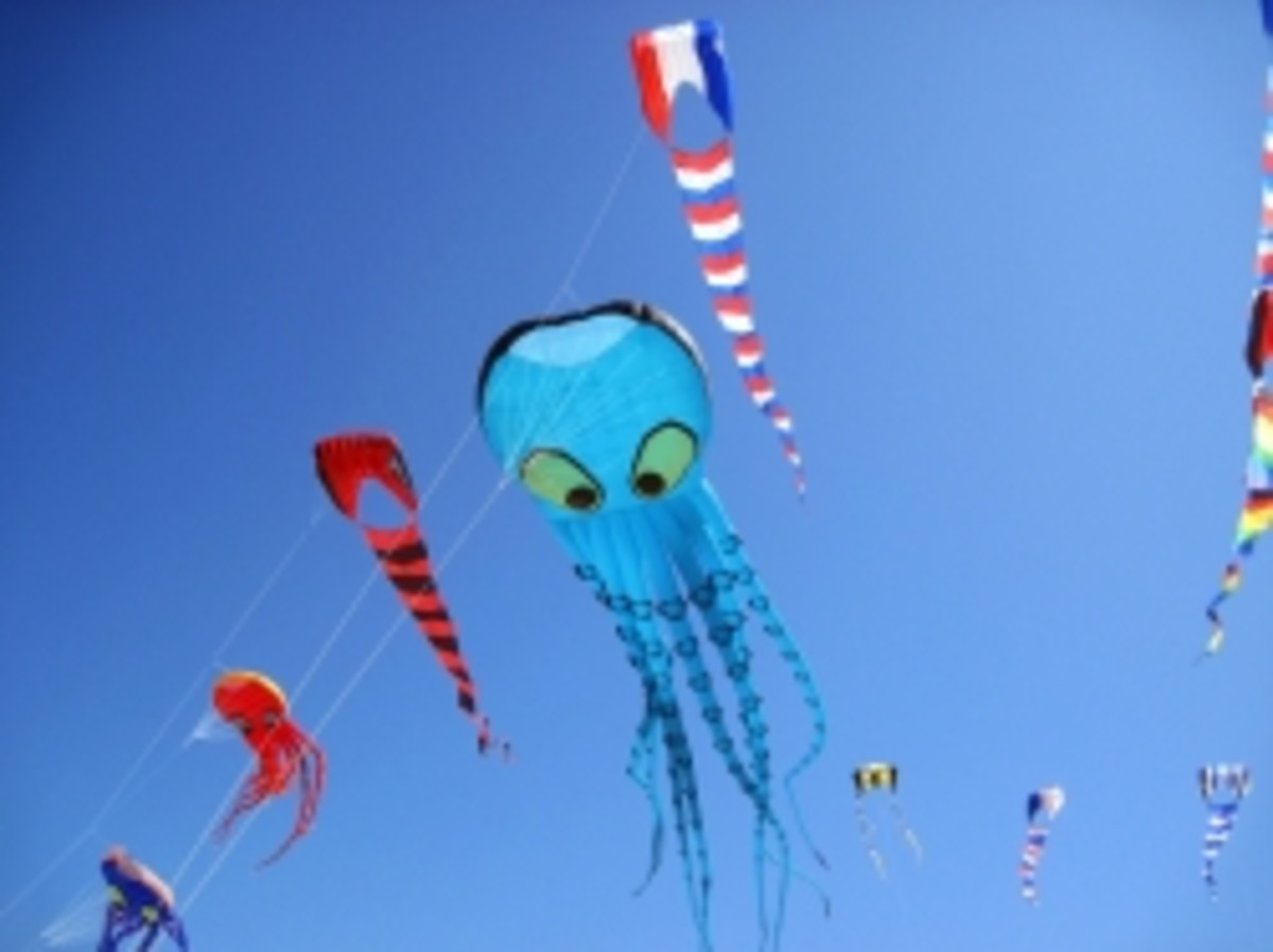 All about Kites