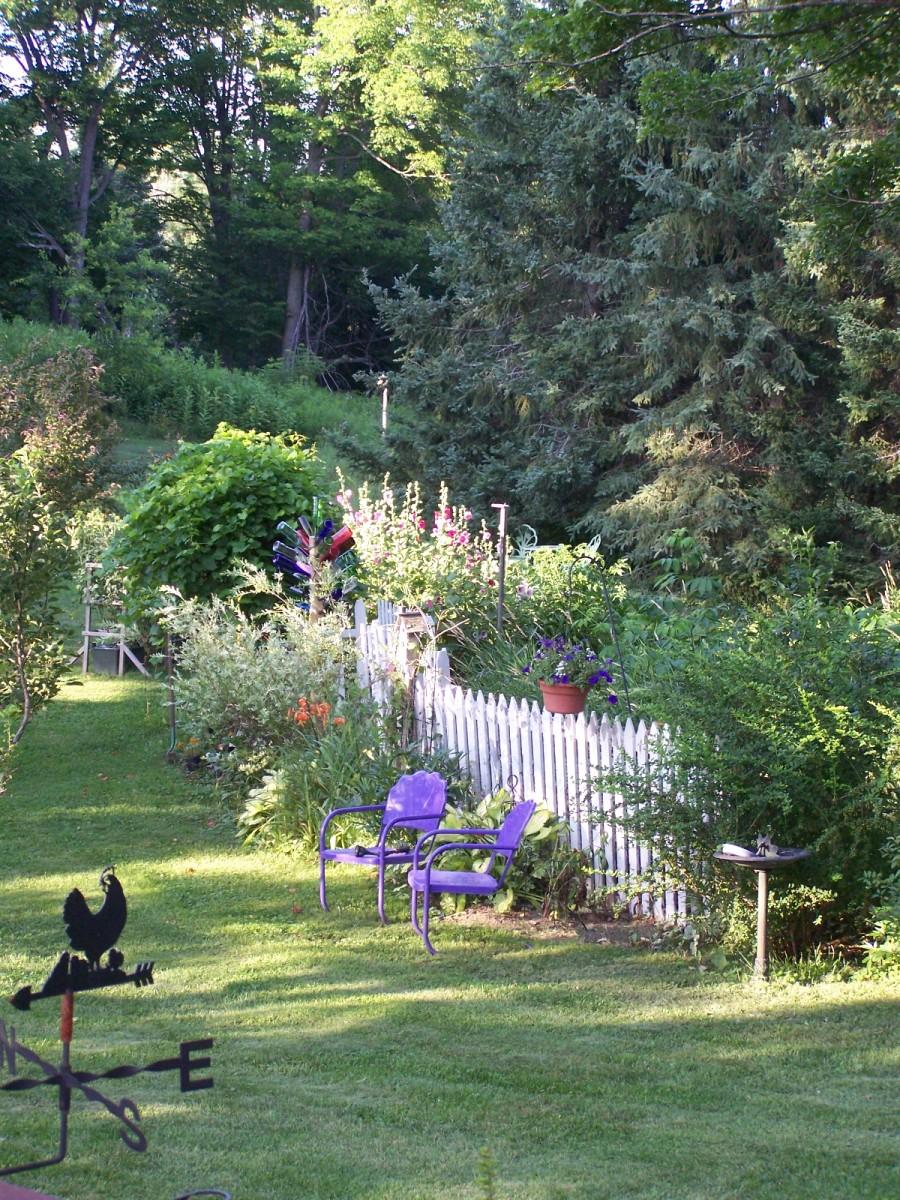 our-garden
