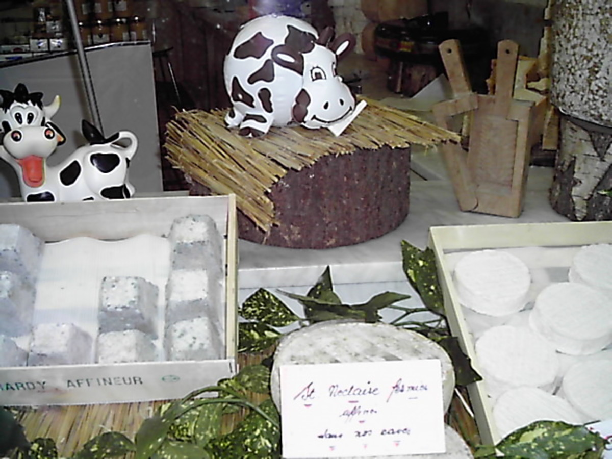 Cheese display at a Cheese shop in Limoges, France