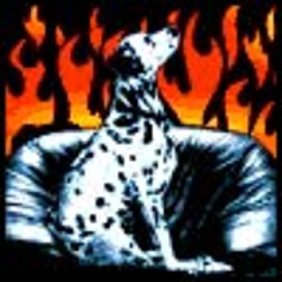 THE FIRE DOG / c. firedog