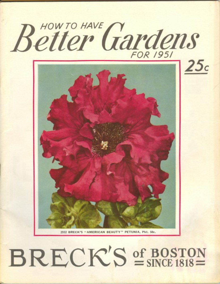 Breck's of Boston vintage seed packet clipart -- 1951
