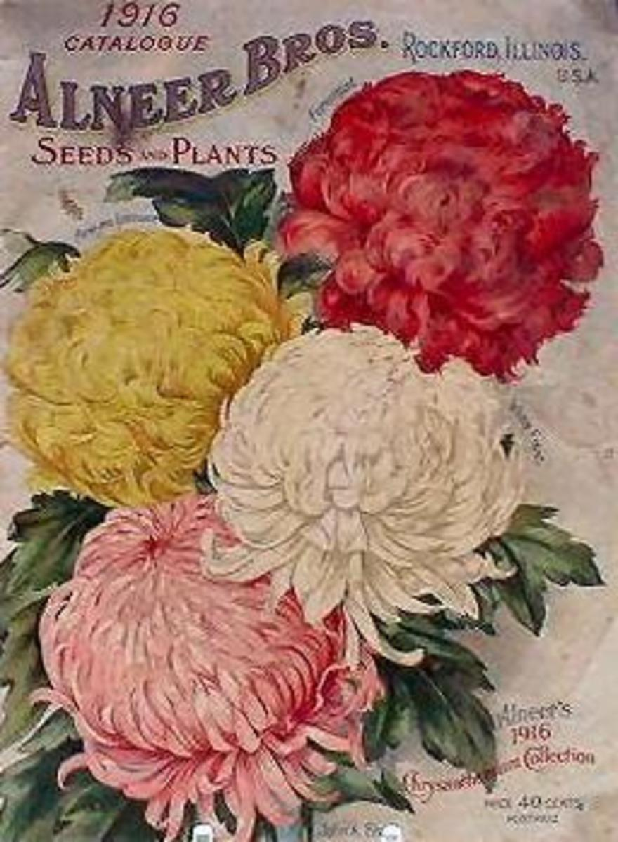 Alneer Bros. vintage seed packet clip art -- 1916
