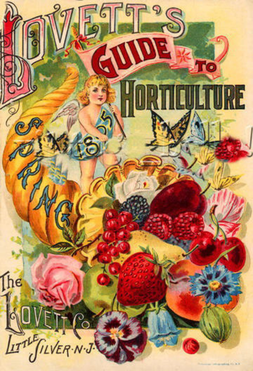 Lovett's Guide to Horticulture cover clipart -- Spring 1895