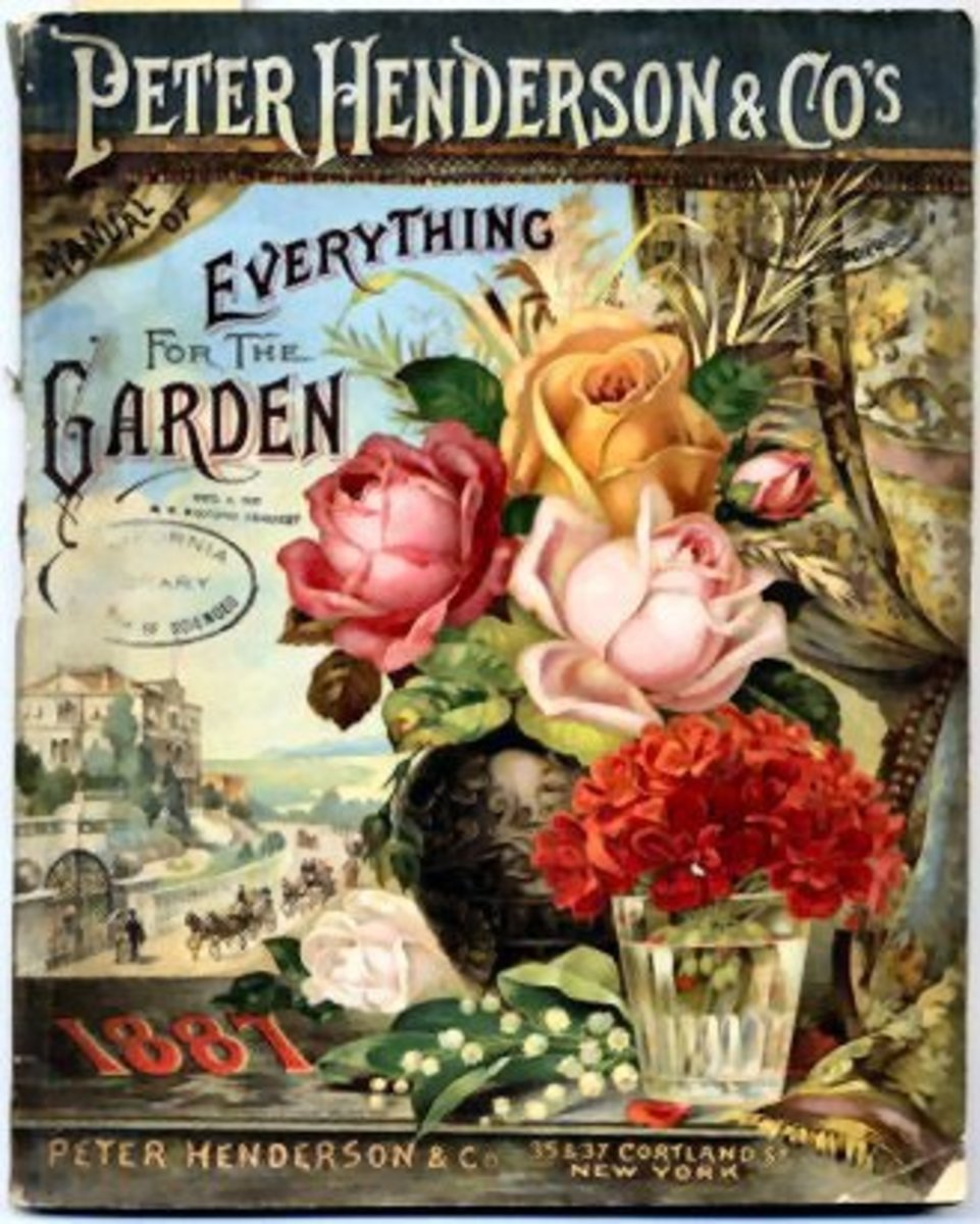 Peter Henderson & Co. vintage seed packet art -- 1887