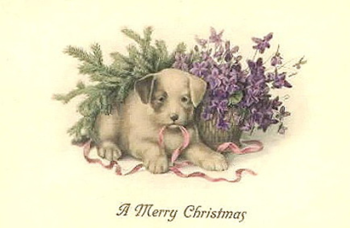 Puppy and violets vintage Christmas card