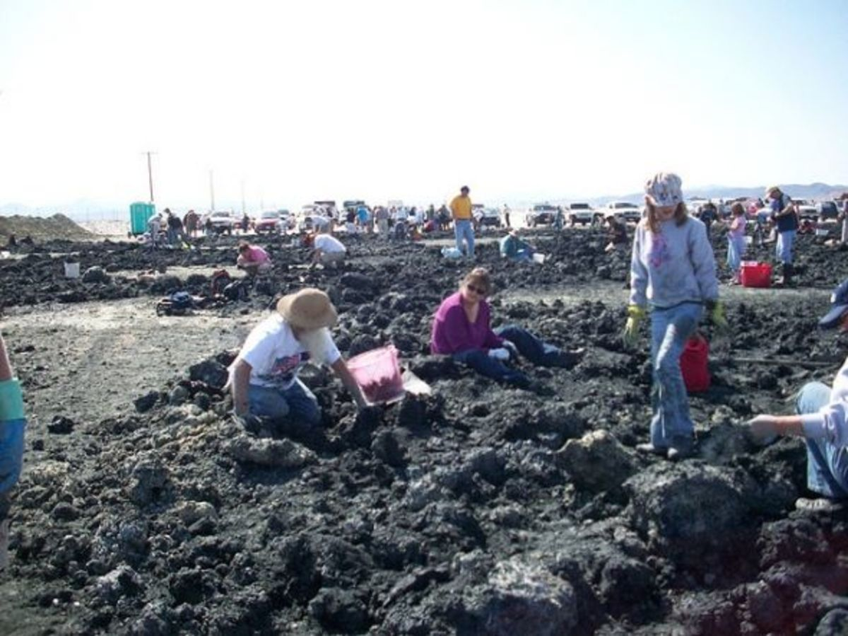 Collecting Crystals at Gemorama