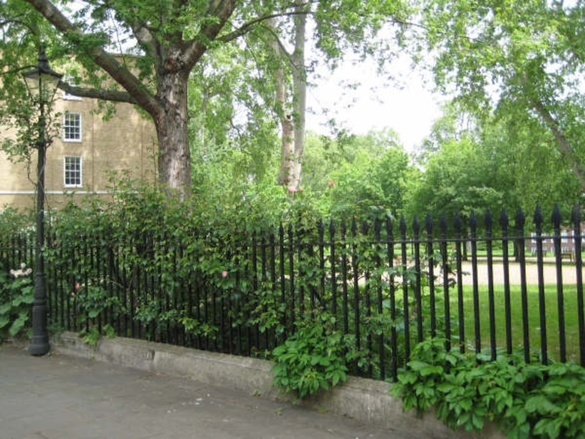 Gray's Inn Gardens, London (c) LondonGirl