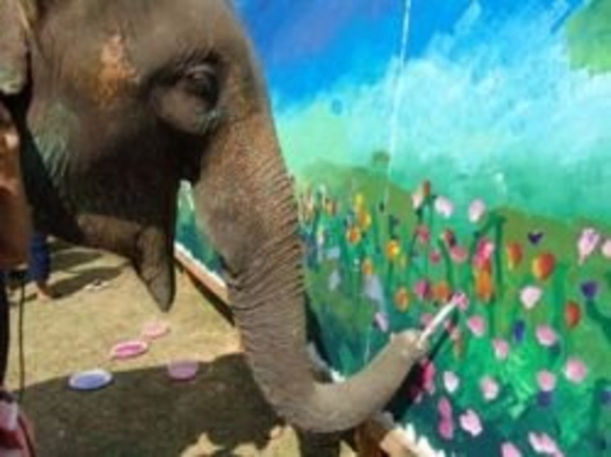 Original Elephant Art Paintings
