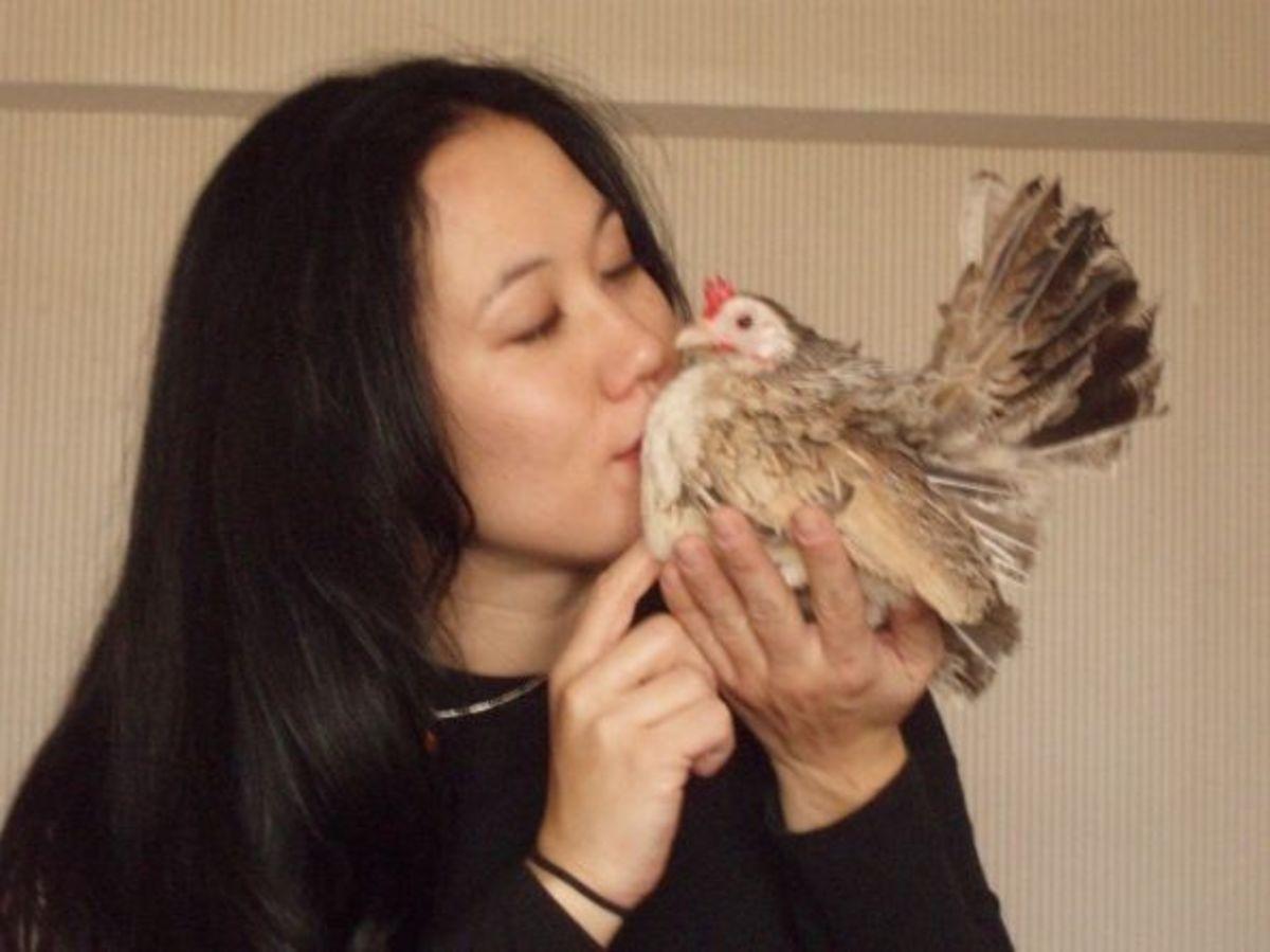 Giving her Serama house chicken a big kiss