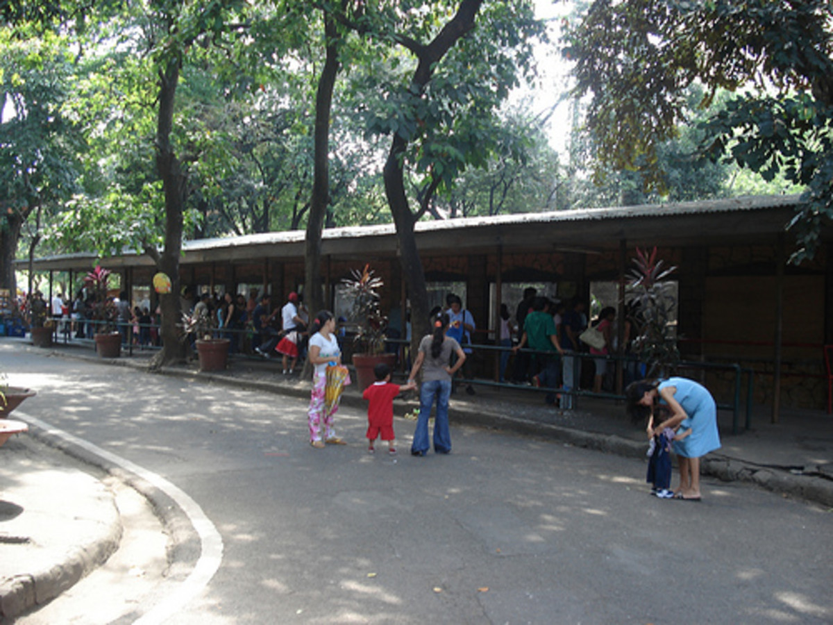 manila-zoo-in-the-philippines