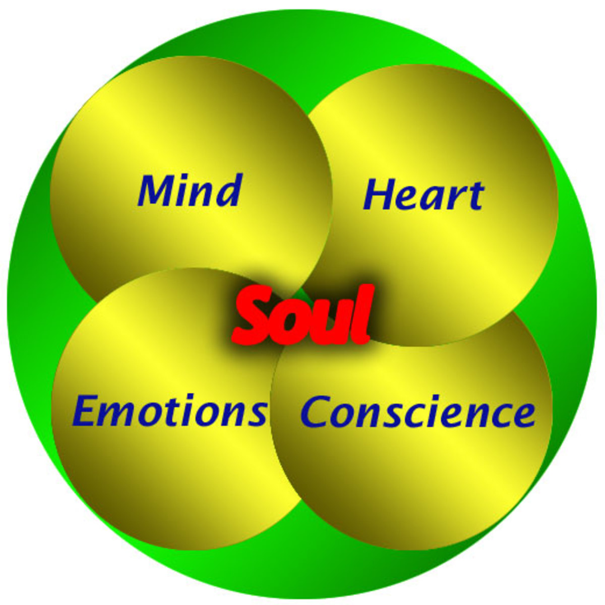 Dissecting the Soul - Mind, Heart, Emotions and Conscience