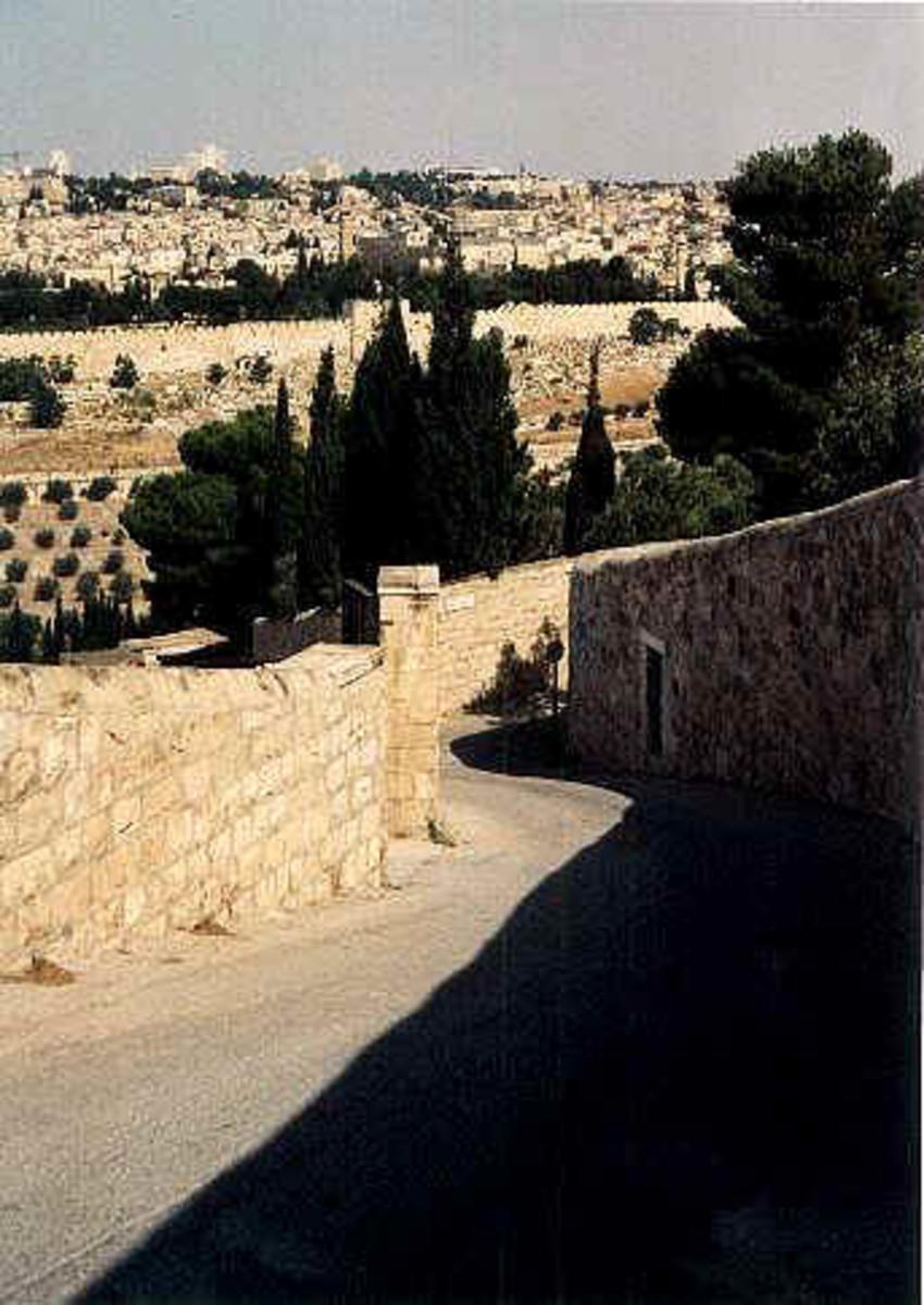 Palm Sunday leading towards the Old City of Jerusalem