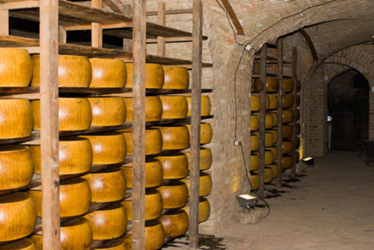 Start an Artisan Cheese Business