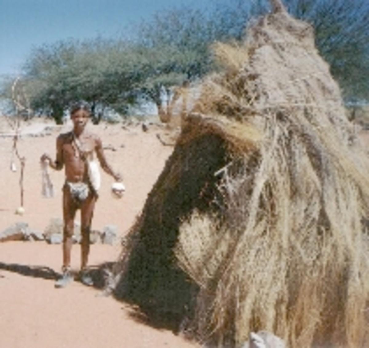 Bushman hut