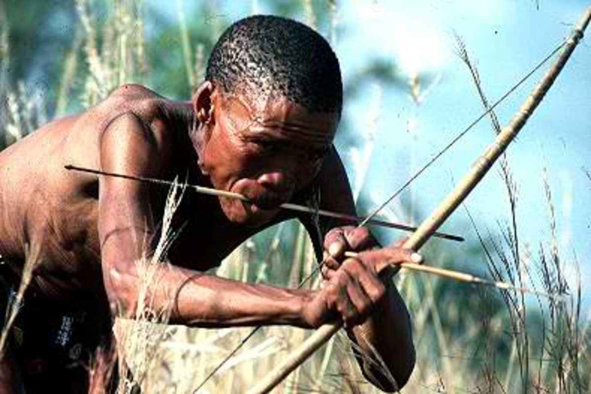 Bushmen still hunt the traditional way.