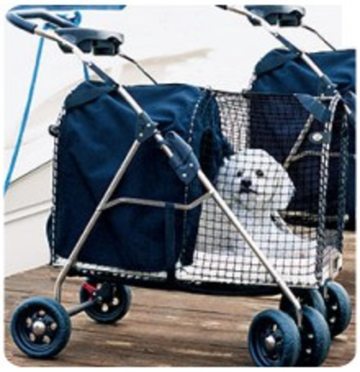 Pet Strollers are a Good Investment