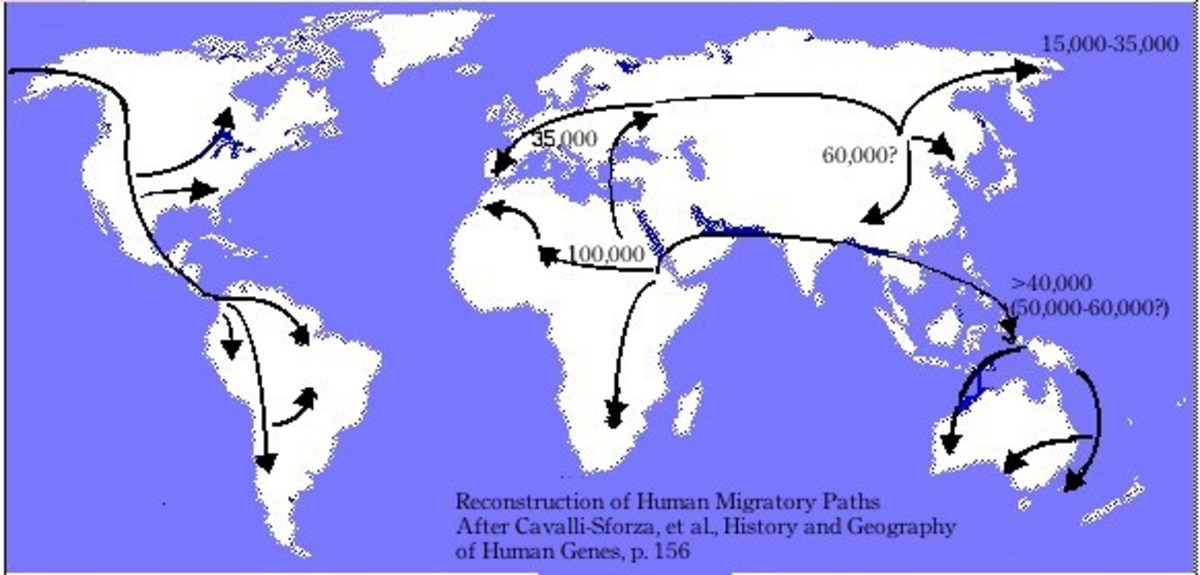 redrawn diagram of postulated human migration paths