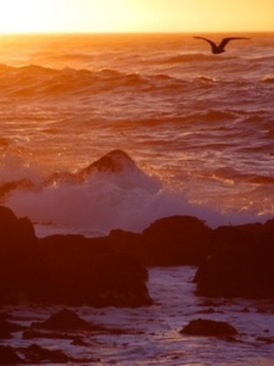 Sunset over Ocean from pdphoto.org
