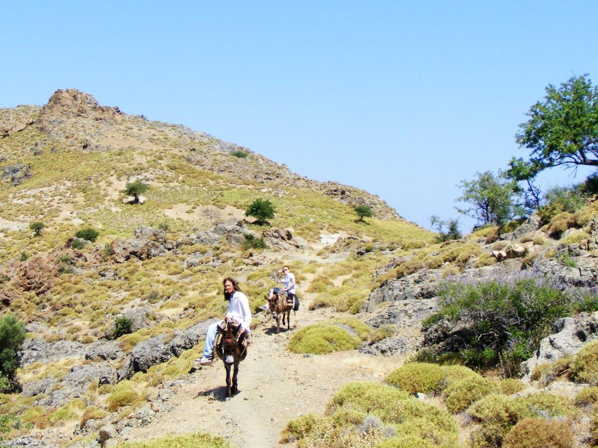 Donkey trek to the Vafios village