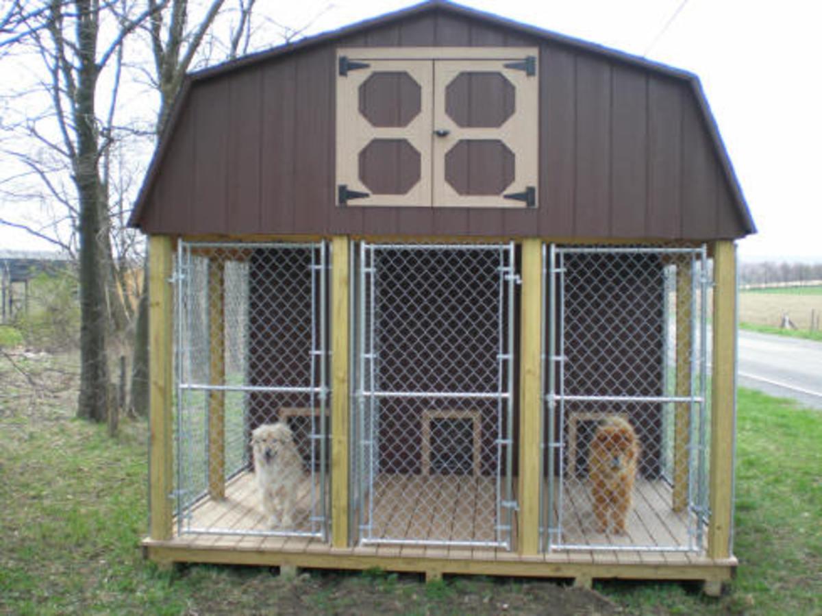 Free Dog House Plans – Build Big Fancy Dog House or Simple Dog