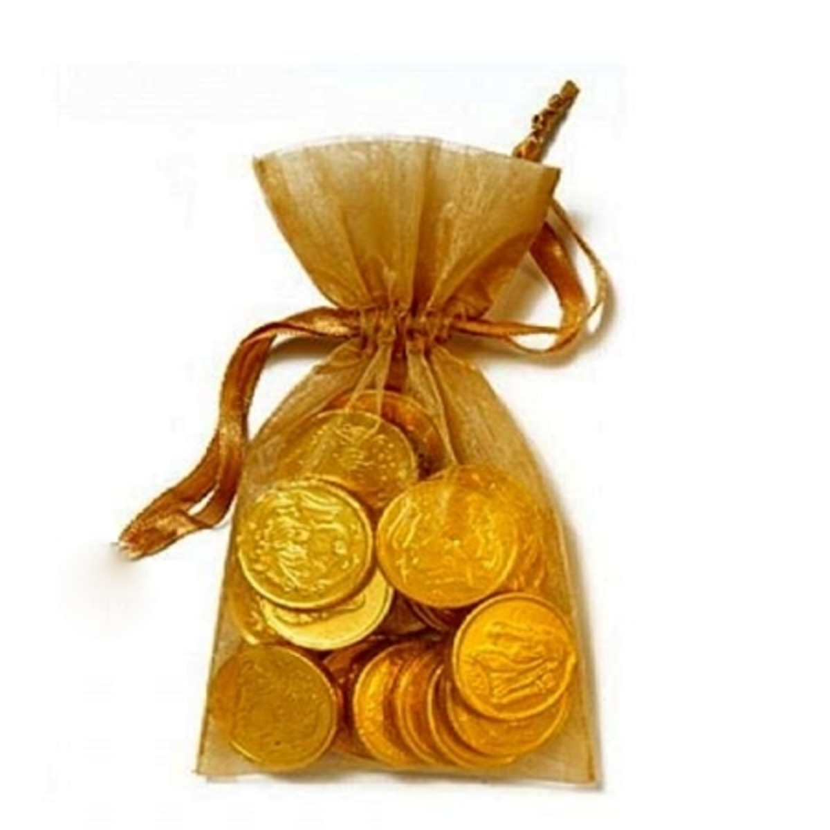 Gold Coins in Pouch