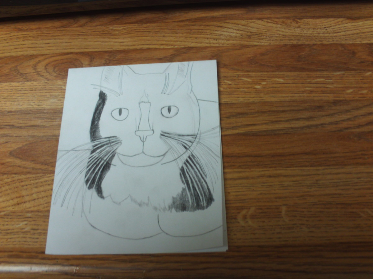 Keep filling in the area around the whiskers and the rest of the face.