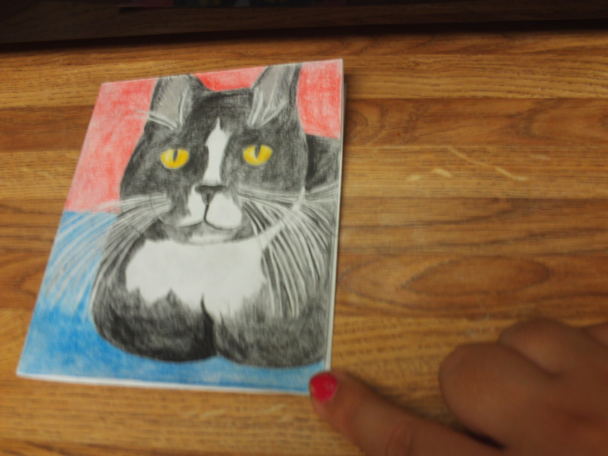 How To Make A Homemade Cat Card