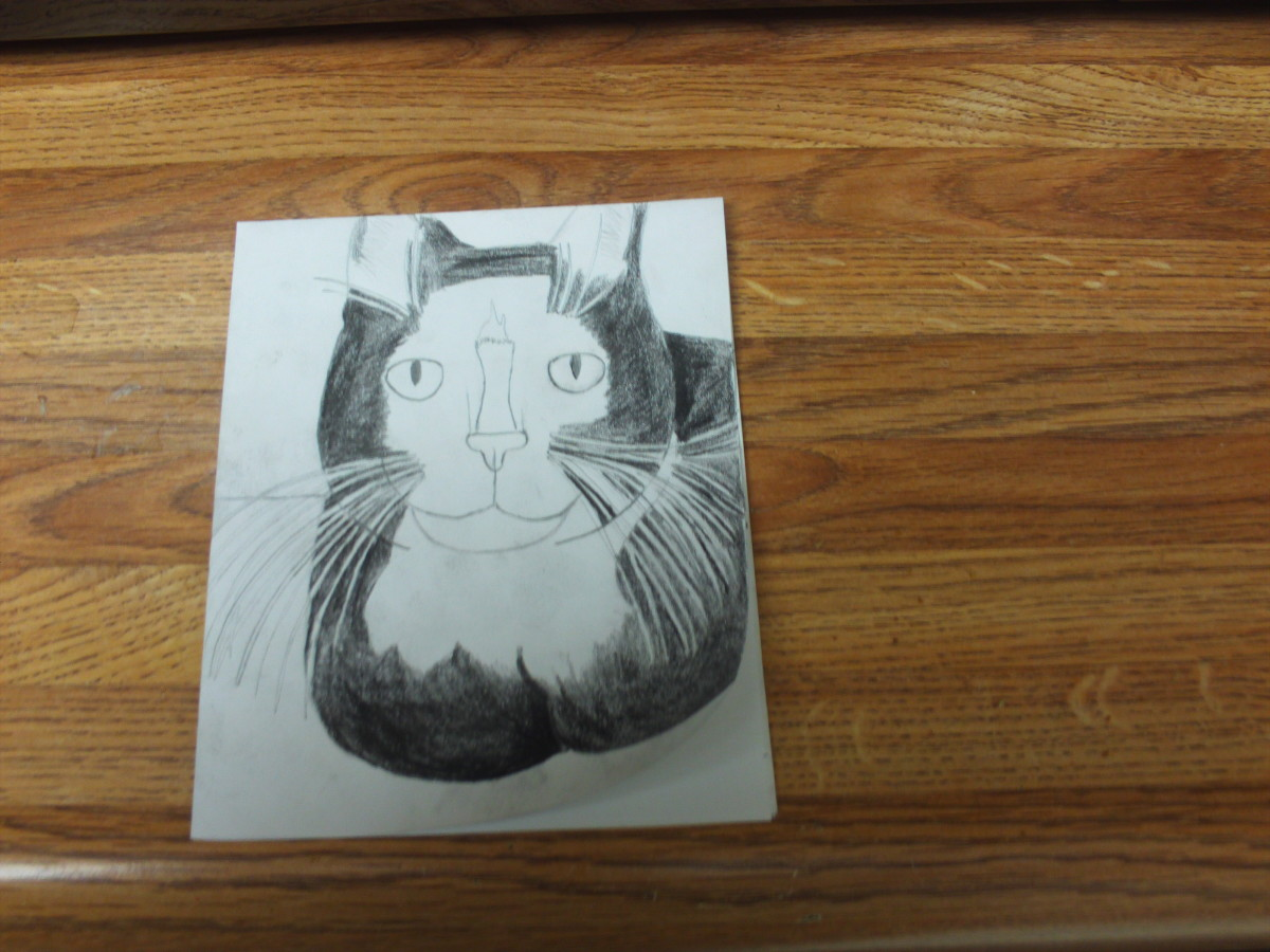 Here is what Bobby cat looks like when the shading is almost completed.