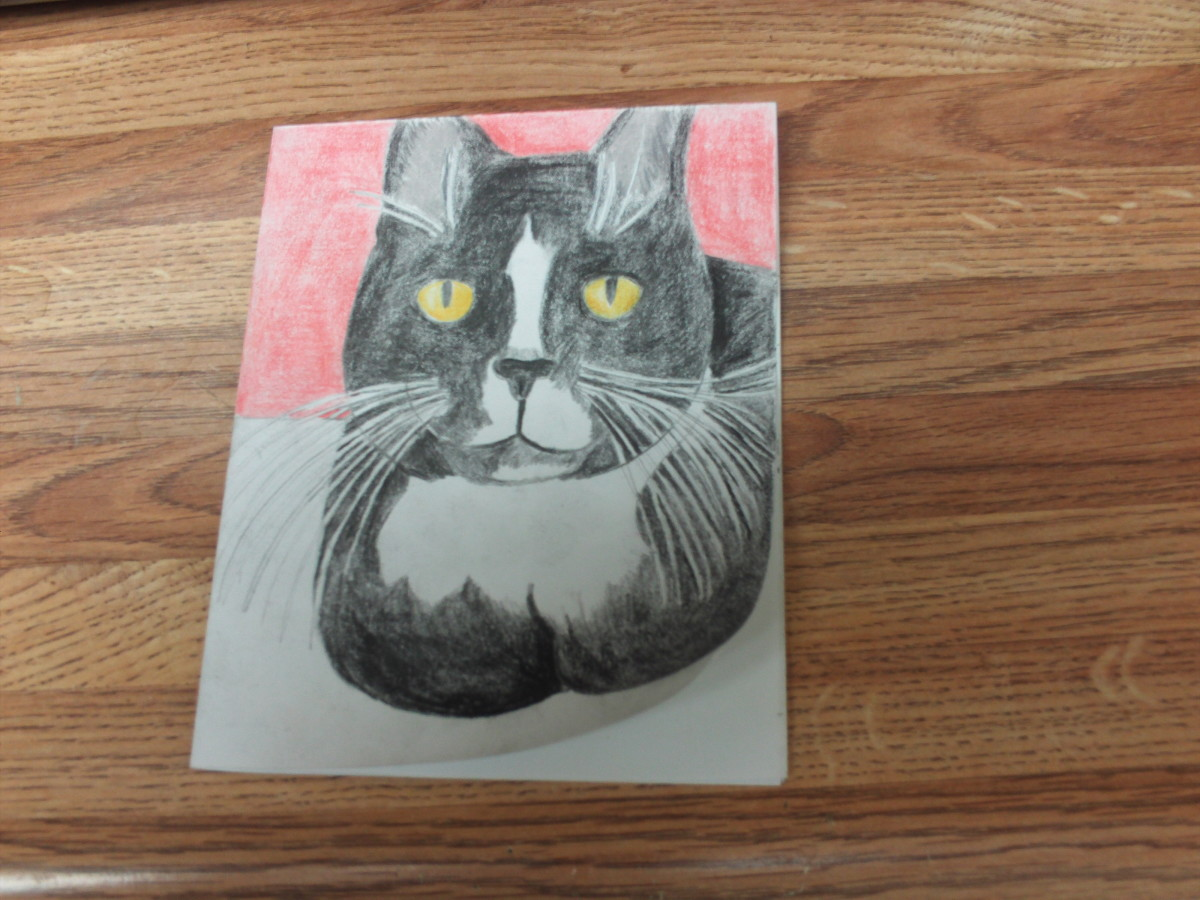 Here I have added the geranium colored pencil to the background.